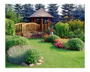 Благоустройство,  озеленение,  рулонный газон,  природный камень,  мульча - foto 0
